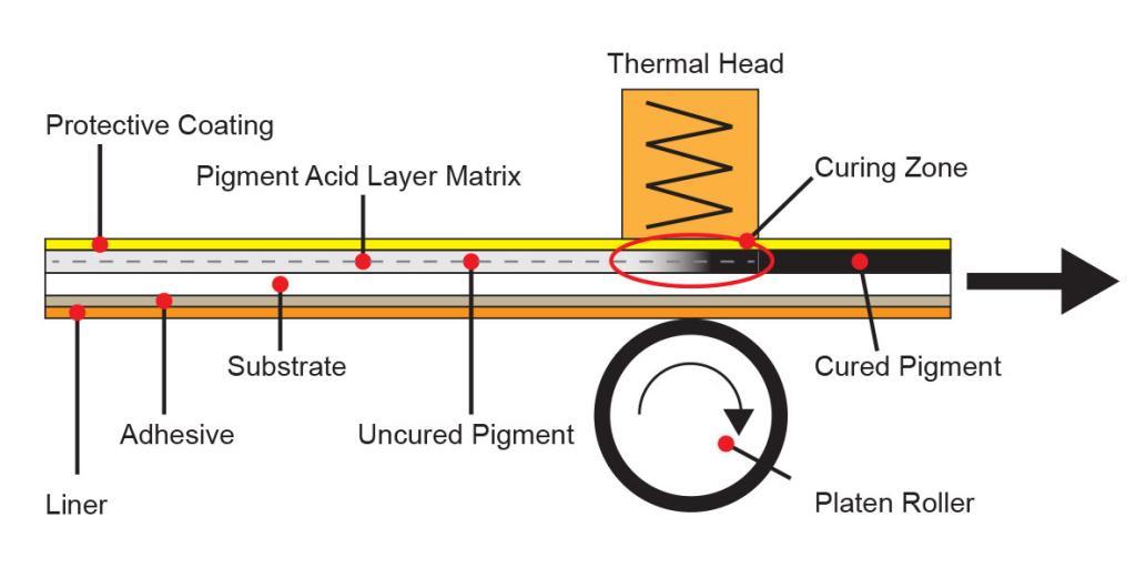 Direct Thermal Printing Paper Diagram